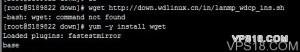-bash: wget: command not found的解决方法,精简安装后问题